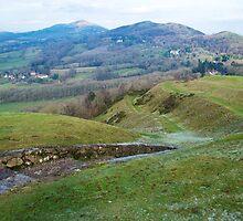 Malvern Hills from British Camp by ecndrew