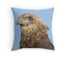 Juvenile Bateleur Eagle Throw Pillow