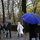 Rain in NYC by Karen Checca