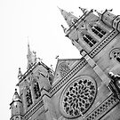 St Mary's Cathedral by Elizabeth Tunstall