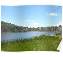 Lake Cobbler Poster