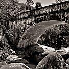 Little Crystal Creek by Natashia Lee