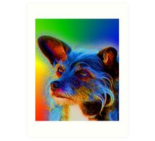 Terrier Mix Dog Adoring Eyes In Abstract Art Print