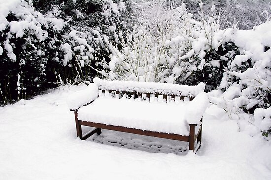 Hethersett Bench by newbeltane
