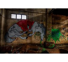Unicorn Graffiti Photographic Print
