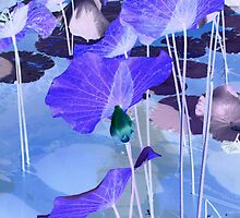 Water lilies_purple by Sally Squirrell