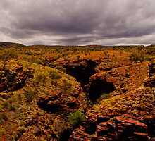 Karijini National Park Gorge  by BeccE