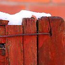 Fence with snow by exvista