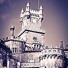 Pena Palace by Soniris