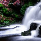 Pentland Falls by Sue Fallon Photography