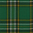 Irish National Tartan by Detnecs2013