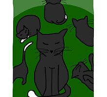 Cats - green by LizPoulain