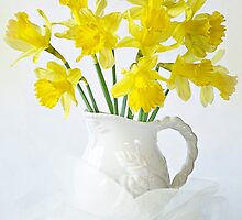 Sweet Daffs by Jacky Parker