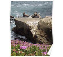Sunbathers - Flora & Fauna                                                                       Poster