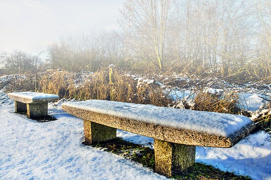174 Snow Covered Bench by George Standen