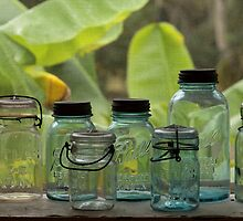 Mason Jars by Carol Bailey White