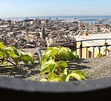 Overlooking Genova by Andrea  Muzzini