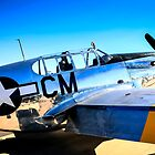 P51C Mustang WWII Fighter Plane by Chris L Smith