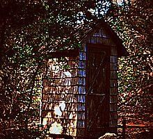 secret place by arlingtonpup