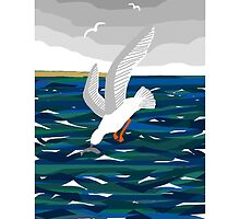 Seagull by LizPoulain