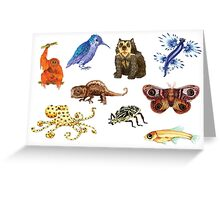 A Menagerie Greeting Card