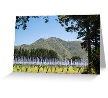 kiwifruit vines Greeting Card