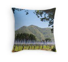 kiwifruit vines Throw Pillow
