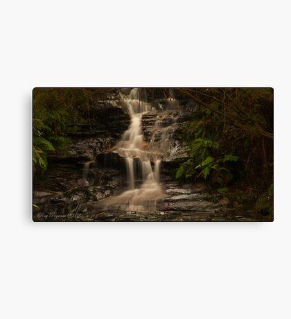 Leura Falls - Leura AU Canvas Print