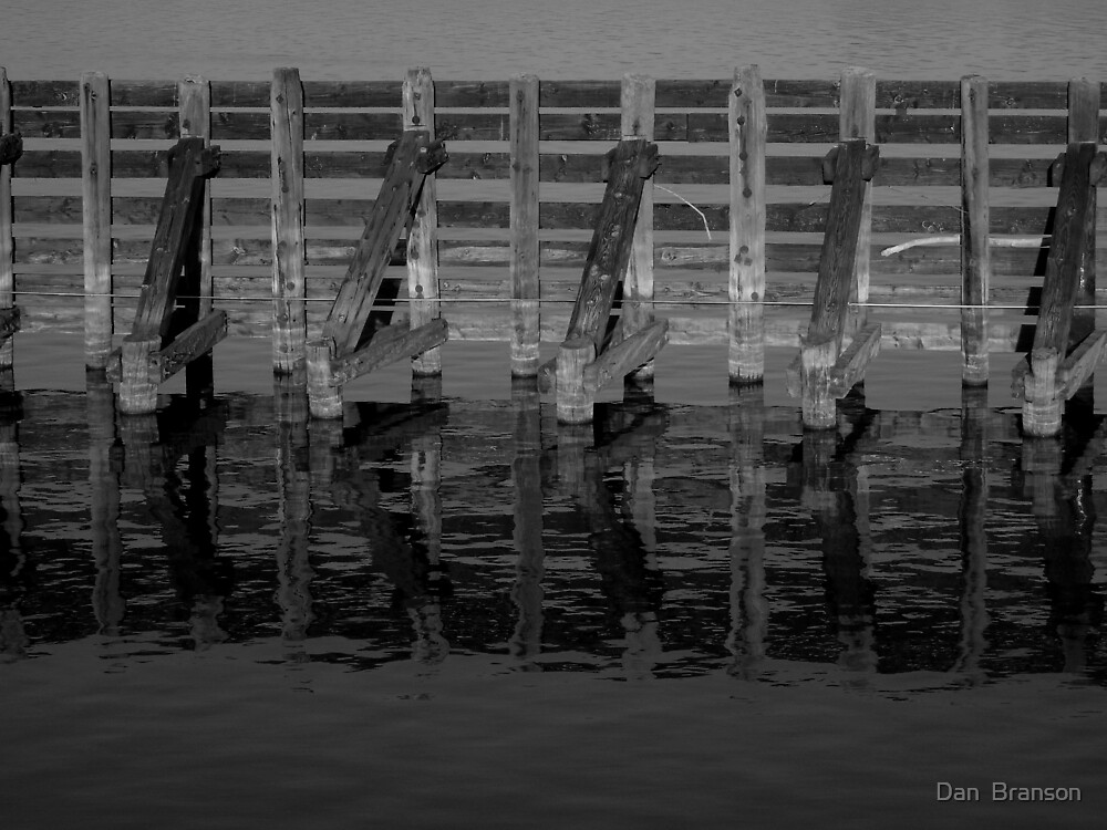 Near Turntable Bridge Savana IL by Dan  Branson