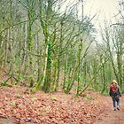 Forest Hike by Dan Jesperson