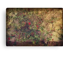 In a Restless World Canvas Print