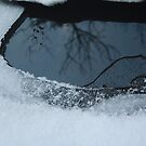 Frost and Reflections by Agood