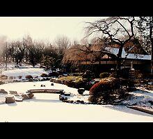Charmy winter by arlingtonpup