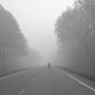 A Misty Ride by Bill Colman