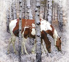 Frosty Paint Pair by WishesandWhims