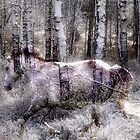 Snow Ghost Horse by WishesandWhims