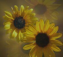 Sunflowers by WishesandWhims