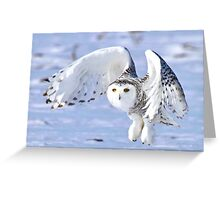 Her power takes flight Greeting Card