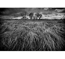 Winter Sweep Photographic Print