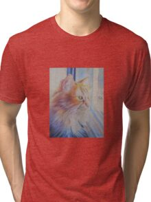 Looking Out Tri-blend T-Shirt