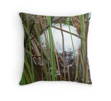 How Tadpoles are made  Throw Pillow