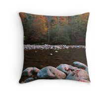 AUTUMN, MIDDLE PRONG Throw Pillow