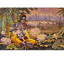 Krishna. Evening flute Photographic Print