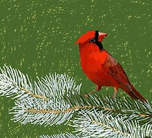 Cardinal by jankoba