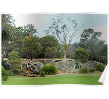 Royal Botanic Gardens Sydney Poster
