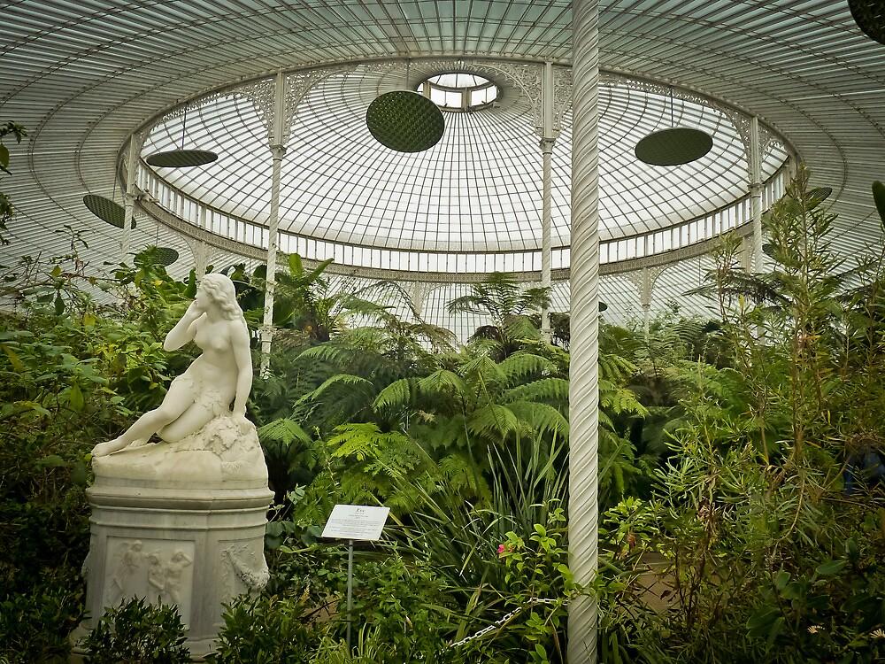 Botanic Gardens of Glasgow I by Soniris
