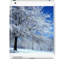 Silver Landscape     ^ iPad Case/Skin