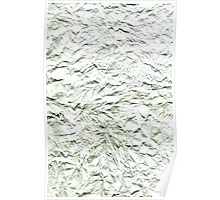 Paper Abstract # 109 Poster