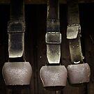 Rusty Cow Bells by vivendulies