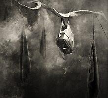 animaly #05 by Krzysztof Wladyka